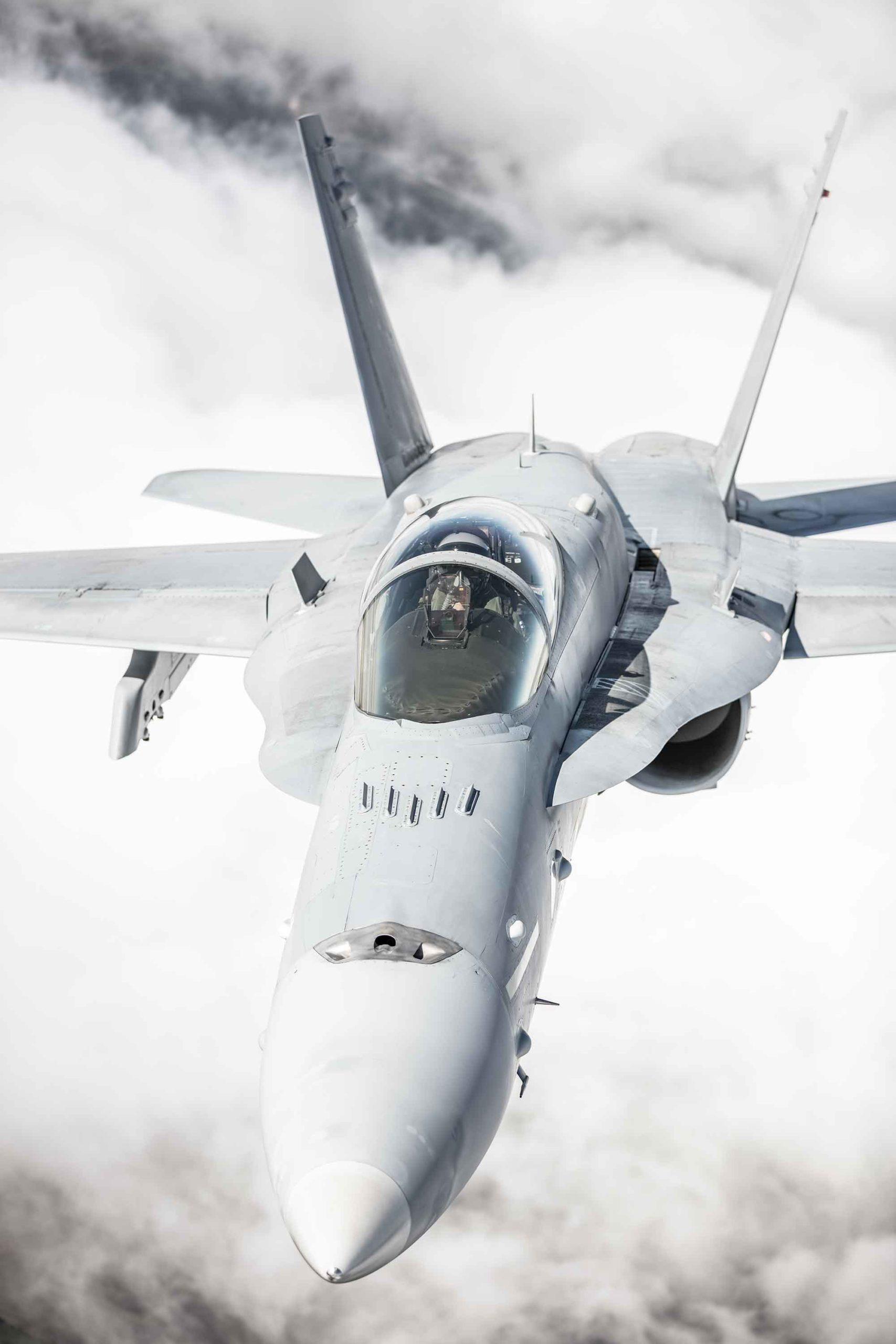 Finnish Mcdonnell Douglass F18 Hornet
